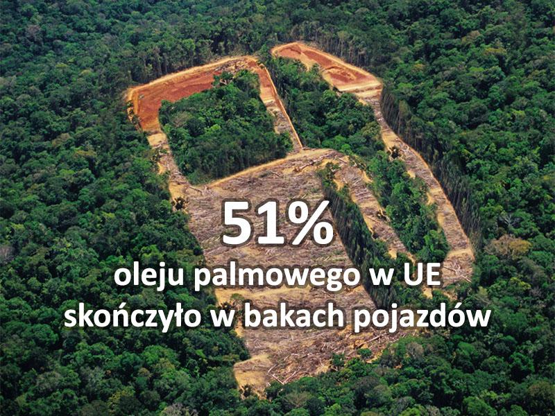 olej palmowy biodiesel