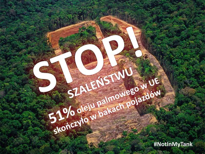 olej palmowy biodiesel petycja
